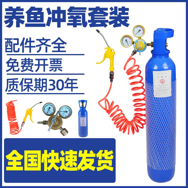 氧气瓶家用养鱼打氧气袋便携式10L升氧气罐鱼运输压力表倒管套装